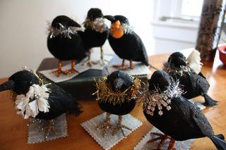 Vacation2009.crows 460